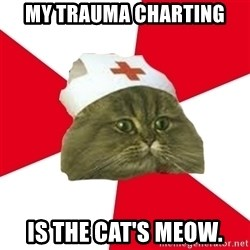 Nursing Student Cat - MY TRAUMA CHARTING IS THE CAT'S MEOW.