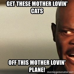 Snakes on a plane Samuel L Jackson - GET THESE MOTHER LOVIN' CATS OFF THIS MOTHER LOVIN' PLANE!
