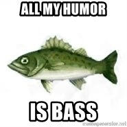 invadent sea bass - All my humor is bass
