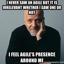 Paulo Coelho - I never saw an agile but it is irrelevant whether I saw one or not I feel agile's presence around me