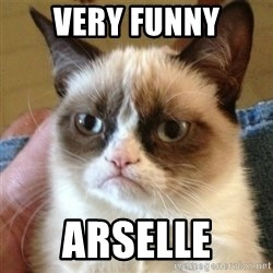 not funny cat - very funny arselle