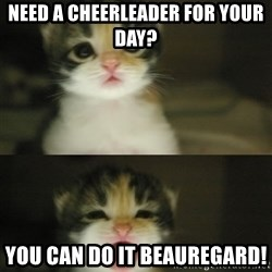 Adorable Kitten - NEED A CHEERLEADER FOR YOUR DAY? YOU CAN DO IT BEAUREGARD!