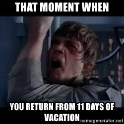 Luke skywalker nooooooo - that moment when you return from 11 days of vacation