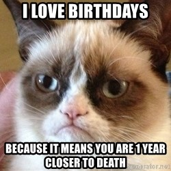 Angry Cat Meme - I love birthdays because it means you are 1 year closer to death