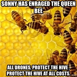 Honeybees - sonny has enraged the queen bee all drones, protect the hive , protect the hive at all costs.