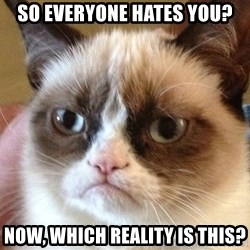 Angry Cat Meme - So everyone hates you? Now, which reality is this?