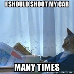 Sophisticated Cat - I should shoot my car many times