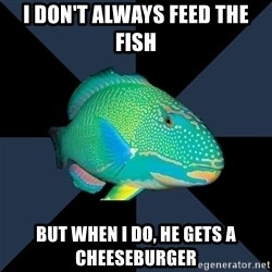 Trans Parrot Fish's Significant Other - I don't always feed the fish But when I do, he gets a cheeseburger