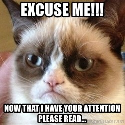 Angry Cat Meme - Excuse me!!! Now that I have your attention please read...