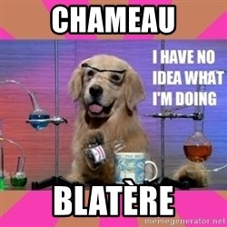 I have no idea what I'm doing dog - chameau blatère