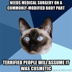 Chronic Illness Cat - Needs medical surgery on a commonly-modified body part Terrified people will assume it was cosmetic