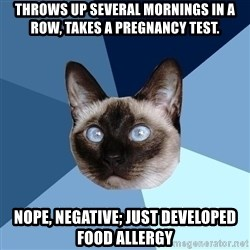 Chronic Illness Cat - Throws up several mornings in a row, takes a pregnancy test. Nope, negative; just developed food allergy