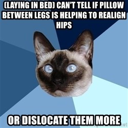 Chronic Illness Cat - (Laying in bed) Can't tell if pillow between legs is helping to realign hips Or dislocate them more