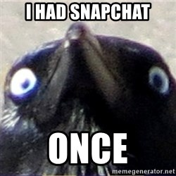 insanity crow - I had snapchat once