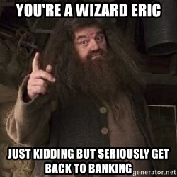 Hagrid - You're a Wizard Eric just kidding but seriously get back to Banking
