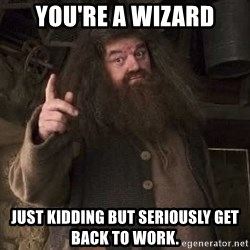 Hagrid - You're a Wizard Just kidding but seriously get back to Work.
