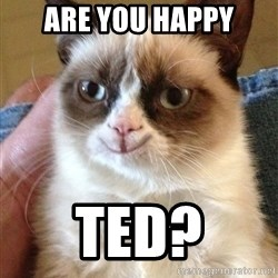 Happy Grumpy Cat 2 - Are You Happy Ted?