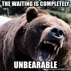 Bear week - the waiting is completely unbearable