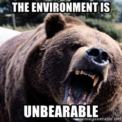 Bear week - the environment is unbearable