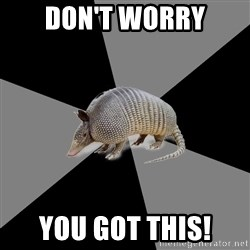 English Major Armadillo - Don't worry you got this!