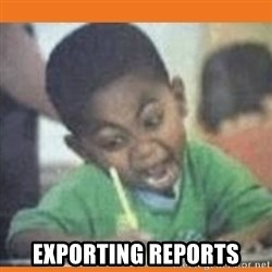 I FUCKING LOVE  -  EXPORTING REPORTS