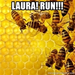 Honeybees - Laura! Run!!!