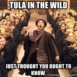 professor quirrell - Tula in the wild Just thought you ought to know.