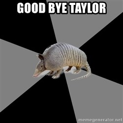 English Major Armadillo - Good Bye Taylor