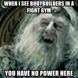 you have no power here - When i see bodybuilders in a fight gym You have no power here