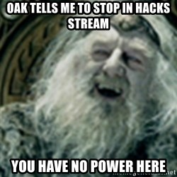 you have no power here - oak tells me to stop in hacks stream you have no power here