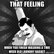 Freddie Mercury MEME - That feeling when you finish washing a two week old laundry basket