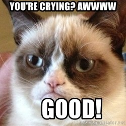 Angry Cat Meme - You're Crying? Awwww     GOOD!