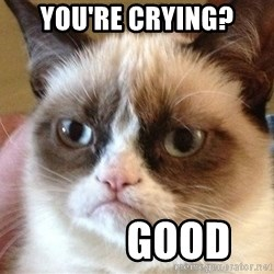 Angry Cat Meme - You're Crying?           Good