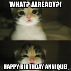 Adorable Kitten - What? Already?! Happy birthday Annique!