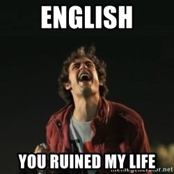 Que pena tu vida meme - English You ruined my life