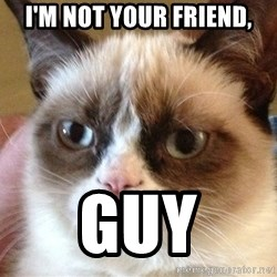 Angry Cat Meme - I'm not your friend, Guy