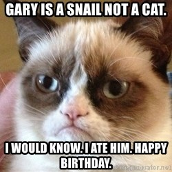 Angry Cat Meme - GARY IS A SNAIL NOT A CAT. I WOULD KNOW. I ATE HIM. HAPPY BIRTHDAY.