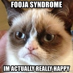 Angry Cat Meme - Fooja syndrome im actually really happy