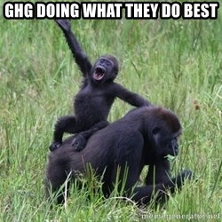 Happy Gorilla - GHG Doing what they do best