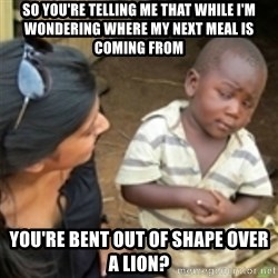 Skeptical african kid  - So you're telling me that while I'm wondering where my next meal is coming from you're bent out of shape over a lion?