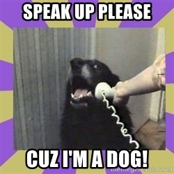 Yes, this is dog! - SPEAK UP PLEASE CUZ I'M A DOG!