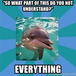 """Dyscalculic Dolphin - """"So what part of this do you not understand?"""" Everything"""