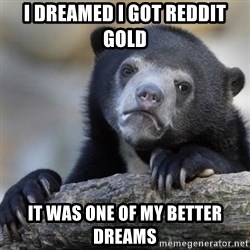 Confessions Bear - I dreamed I got reddit gold it was one of my better dreams