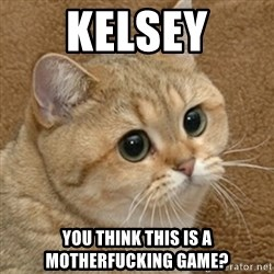 motherfucking game cat - KELSEY YOU THINK THIS IS A MOTHERFUCKING GAME?