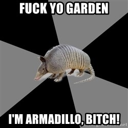 English Major Armadillo - Fuck yo garden I'm armadillo, bitch!