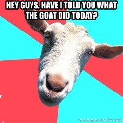 Oblivious Activist Goat - Hey guys, have i told you what the goat did today?