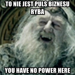 you have no power here - To nie jest Puls Biznesu Ryba You have no power here