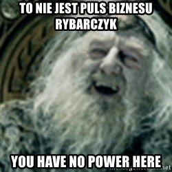 you have no power here - To nie jest puls biznesu rybarczyk you have no power here
