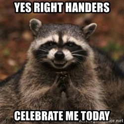 evil raccoon - Yes right handers celebrate me today