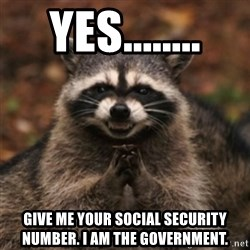 evil raccoon - Yes........ Give me your social security number. I am the government.